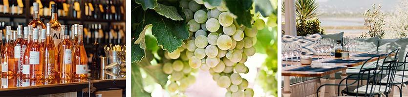 Wijnproeverij als het regent op Ibiza