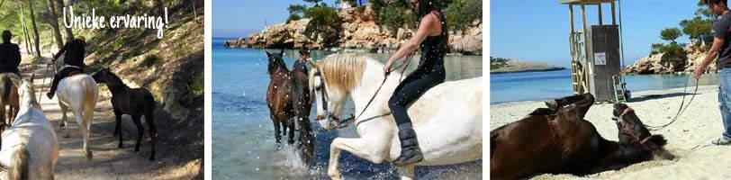 Paardrijden Ibiza horse valley